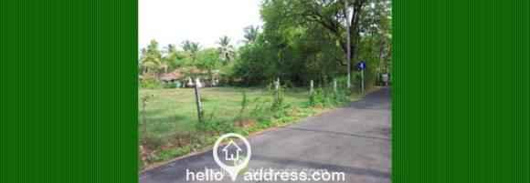 Residential Land for Sale in Palakad, Vadakkencherry, Vadakkencherry