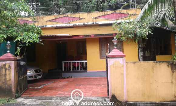 Residential House/Villa for Sale in Ernakulam, Kothamangalam, Nellikkuzhi