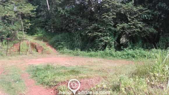 Agricultural Land for Sale in Thrissur, Irinjalakuda, Kombara