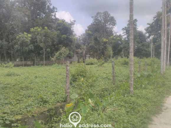 Residential Land for Sale in Pathanamthitta, Adoor, Adoor