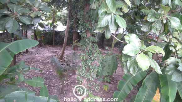 Residential Land for Sale in Alleppey, Alapuzha, Pazhaveed