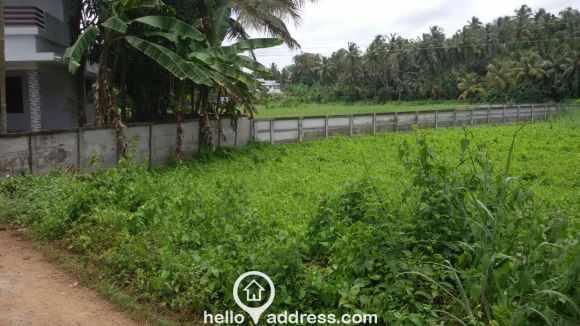 Residential Land for Sale in Thrissur, Thrissur, Olarikkara