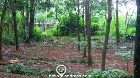 Residential Land for Sale in Alleppey, Mavellikkara, Kattanam