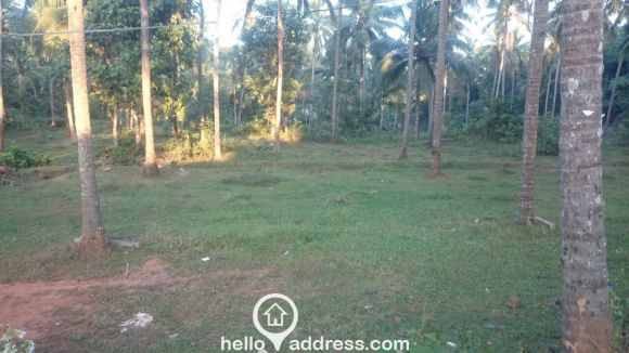 Residential Land for Sale in Kozhikode, Kunnamangalam, Kunnamangalam