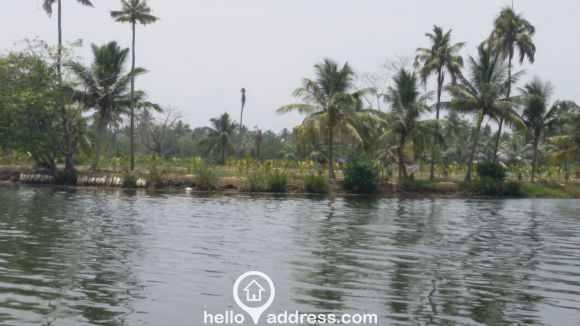 Agricultural Land for Sale in Kottayam, Vaikam, Chempu