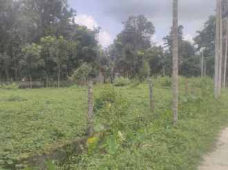 Residential Land for Sale in Pathanamthitta, Adoor, Adoor, vellakulangara