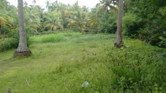Residential Land for Sale in Thrissur, Guruvayur, Guruvayur