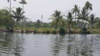 Agricultural Land for Sale in Kottayam, Vaikam, Chempu, poothotta