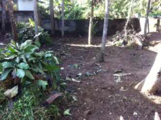 Residential Land for Sale in Trivandrum, Thiruvananthapuram, Vattiyoorkavu, Thittamangalam