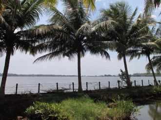 Residential Land for Sale in Kollam, Karunagapally, Karunagapally town
