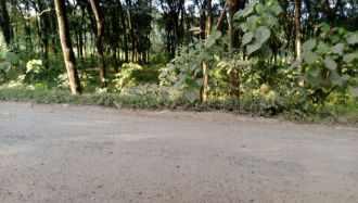 Residential Land for Sale in Ernakulam, Perumbavoor, Permbavoor town, Kuttipadom