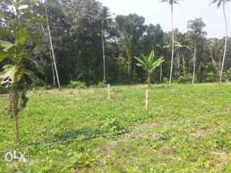 Residential Land for Sale in Kottayam, Changanassery, Koothrappally