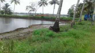Commercial Land for Sale in Alleppey, Kuttanad, Mamkomb
