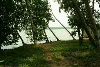 Residential Land for Sale in Kollam, Kollam, Asramam