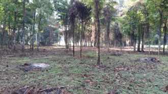 Residential Land for Sale in Alleppey, Chengannur, Chengannur town, Arattupuzha