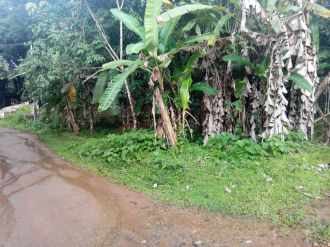 Residential Land for Sale in Kottayam, Pala, Thidanad, Paika Route
