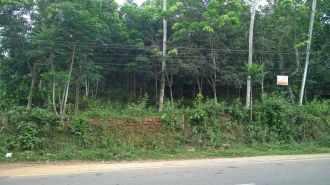Residential Land for Sale in Kottayam, Thalayolaparambu, Thalayolaparambu, Peruva