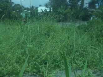 Residential Land for Sale in Kottayam, Kottayam, Kottayam town