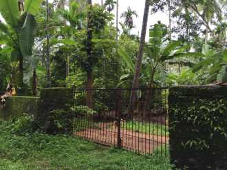Residential Land for Sale in Thrissur, Amballoor, Mannampetta