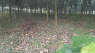 Residential Land for Sale in Ernakulam, Muvattupuzha, Marady, Muattupuzha _ piravom