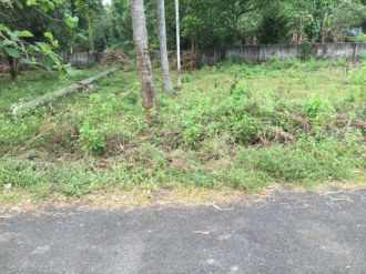 Residential Land for Sale in Thrissur, Chalakudy, Elanjipra