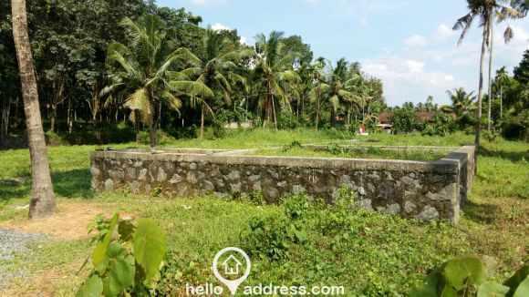 Residential Land for Sale in Ernakulam, Chottanikkara, Thiruvaniyoor
