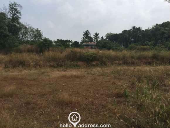 Residential Land for Sale in Ernakulam, Thripunithura, Kandanad