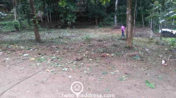 Residential Land for Sale in Pathanamthitta, Pathanamthitta, Elanthoor