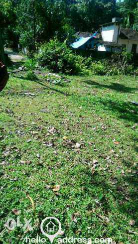 Residential Land for Sale in Alleppey, Chengannur, Chengannur town