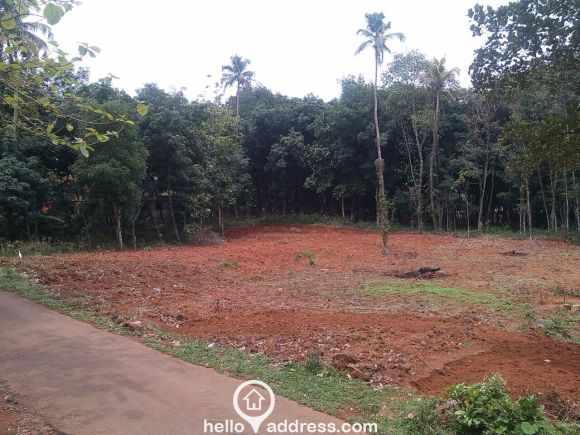 Residential Land for Sale in Idukki, Thodupuzha, Thodupuzha town
