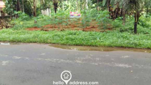 Residential Land for Sale in Kottayam, Pala, Marangattupilly