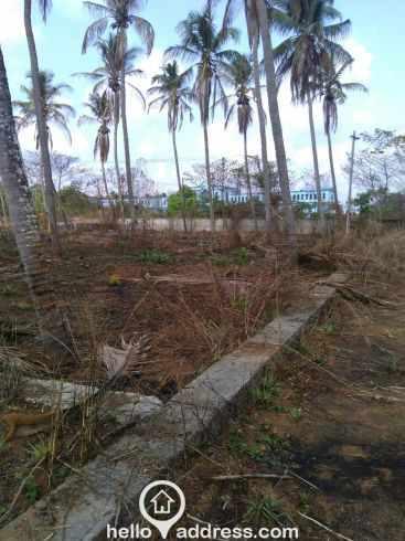 Residential Land for Sale in Thrissur, Thrissur, Pottore