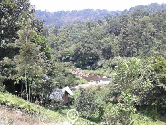 Residential Land for Sale in Idukki, Munnar, Munnar