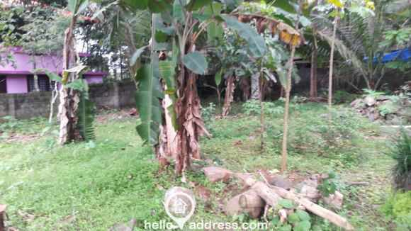 Residential Land for Sale in Kottayam, Ettumanoor, Ettumanoor