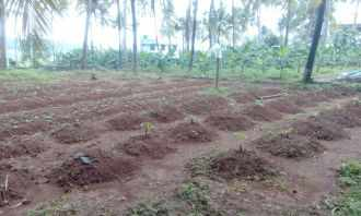 Residential Land for Sale in Thrissur, Thrissur, Arimboor , Mannakkody