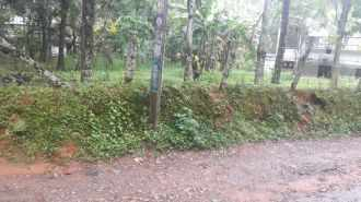 Residential Land for Sale in Pathanamthitta, Adoor, Adoor, Karikkineth