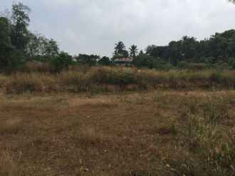 Residential Land for Sale in Ernakulam, Thripunithura, Kandanad, Kureekad