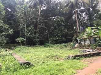 Residential Land for Sale in Ernakulam, Kakkanad, Pukkattupady, Muthirakattumukal