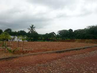 Residential Land for Sale in Kottayam, Thalayolaparambu, Thalayolaparambu, Mercy  hospital