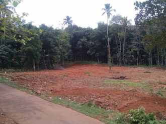 Residential Land for Sale in Idukki, Thodupuzha, Thodupuzha town, Milakombil
