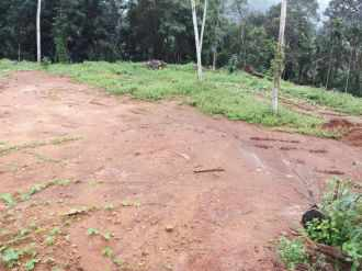 Residential Land for Sale in Kottayam, Pala, Ramapuram