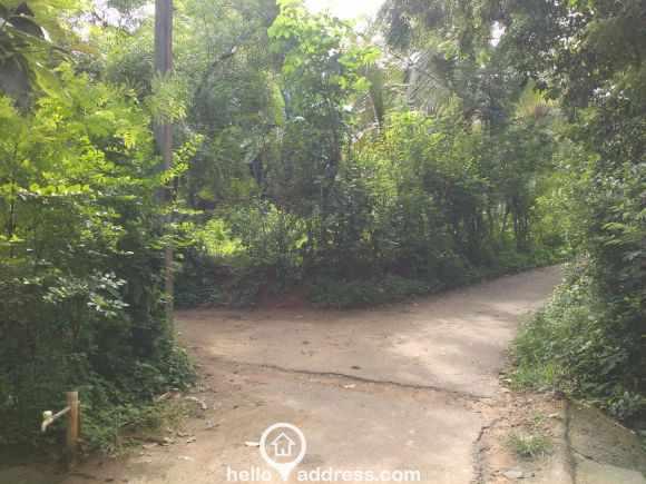 Residential Land for Sale in Palakad, Alathur, Kuzhalmannam