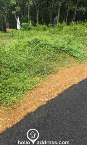Residential Land for Sale in Pathanamthitta, Ranni, Cherukole