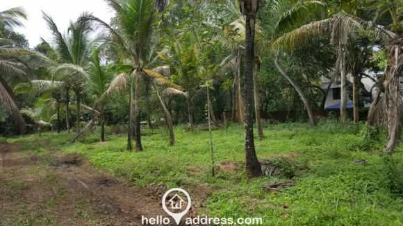 Residential Land for Sale in Trivandrum, Vizhinjam, Vizhinjam