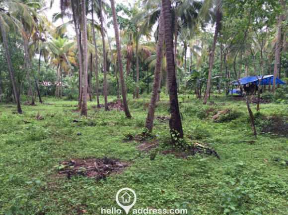 Commercial Land for Sale in Kozhikode, Elathur, Atholi