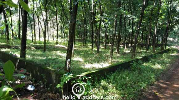 Residential Land for Sale in Ernakulam, Perumbavoor, Airapuram