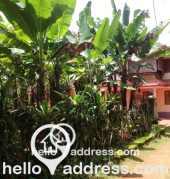 Residential Land for Sale in Kottayam, Ettumanoor, Ettumanoor