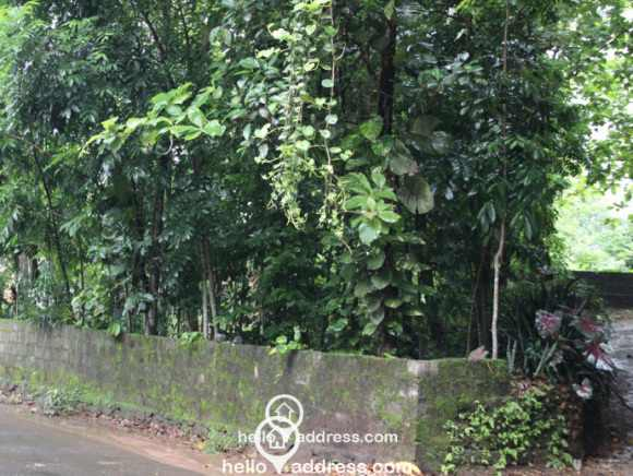Residential Land for Sale in Ernakulam, Perumbavoor, Vengoor