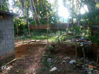 Residential Land for Sale in Trivandrum, Venganoor, Venganoor