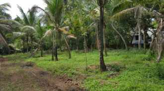 Residential Land for Sale in Trivandrum, Vizhinjam, Vizhinjam